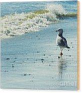 Seagull Stroll Wood Print