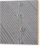 Seagull Tracks Wood Print