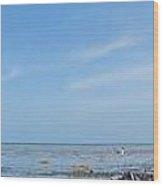 Seagulls At Low Tide Wood Print by Susan Sidorski