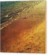 Seagulls At Sunset Wood Print