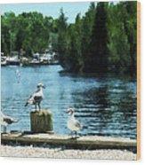 Seagulls On The Pier Wood Print