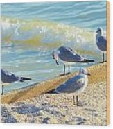 Seagulls On Wall Wood Print