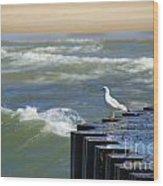 Seagull's Perch Wood Print
