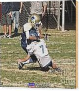 Seahawks Vs Bruins 8144 Wood Print