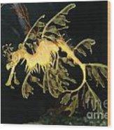 Seahorse Shuffle Wood Print
