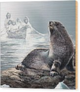 Harp Seal And Native Hunters Wood Print