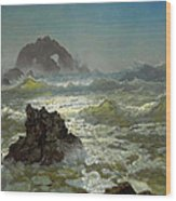 Seal Rock California Wood Print