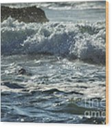 Seal Surfing Waves Wood Print