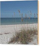 Seaoats And Beach Wood Print
