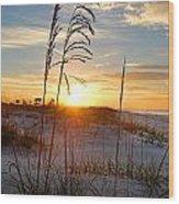 Seaoats Sunrise Wood Print