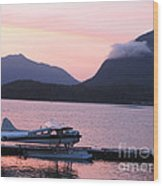 Seaplane And Cloud Wood Print