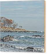 Seapoint Beach  Wood Print