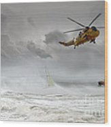 Search And Rescue Wood Print