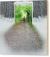 Searching Better Weather Wood Print