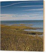Seascape 2 Wood Print