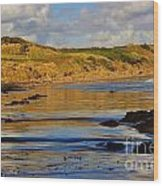 Seascape At Phillip Island Wood Print