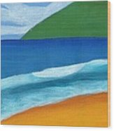 Seascape Wood Print by Bav Patel