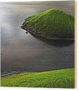 Seascape Seaweed On Rocks Wood Print