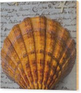 Seashell And Words Wood Print