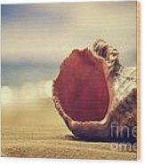 Seashell In The Sand  Wood Print by Jelena Jovanovic
