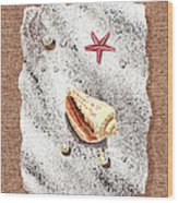 Seashell Pearls And Water Drops Collection Wood Print
