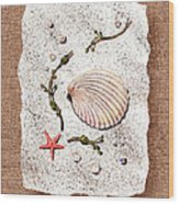 Seashell With Pearls Sea Star And Seaweed  Wood Print