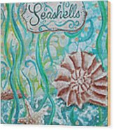 Seashells II Wood Print