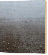Seashells On Foggy Beach Wood Print