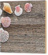 Seashells On Wood Wood Print