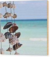 Seashells Wood Print by Sophie Vigneault