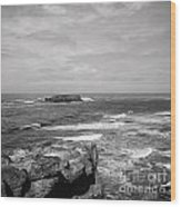 Seaside Bluff Bw Wood Print