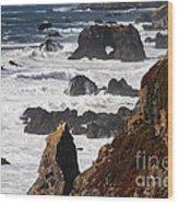 Seaside Color Wood Print