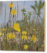 Seaside Flora Wood Print