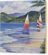Seaside Sails Wood Print by John Zaccheo