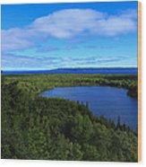 Season Of Blue And Green Wood Print