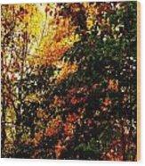 Season Of Color Wood Print