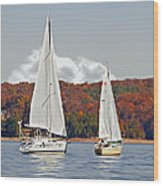 Seasonal Sailing Wood Print by Susan Leggett