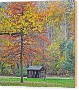 Seasonal Sensation Wood Print