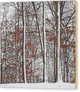 Seasons Converge Wood Print