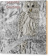 Season's Greetings Card Winter Barred Owl Wood Print