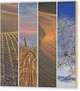 Seasons Of The Palouse Wood Print by Latah Trail Foundation