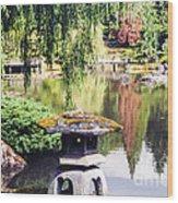 Seattle Tea Garden Reflections Wood Print