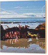 Seaweed 1 Wood Print
