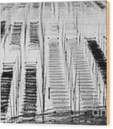 Seaweed Farm Wood Print
