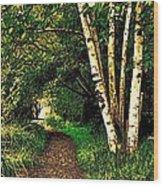 Sechelt Marsh Path Wood Print