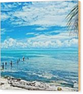 Secluded Beach On Caye Caulker Belize Wood Print