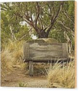 Secluded Bench Wood Print
