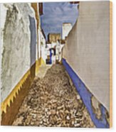 Secluded Cobblestone Street In The Medieval Village Of Obidos IIi Wood Print