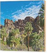 Second Largest Stand Of Fan Palms In The World In Andreas Canyon In Indian Canyons-ca Wood Print