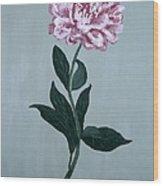 Second Spring Peony Wood Print